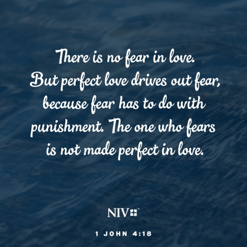 NIV Verse of the Day