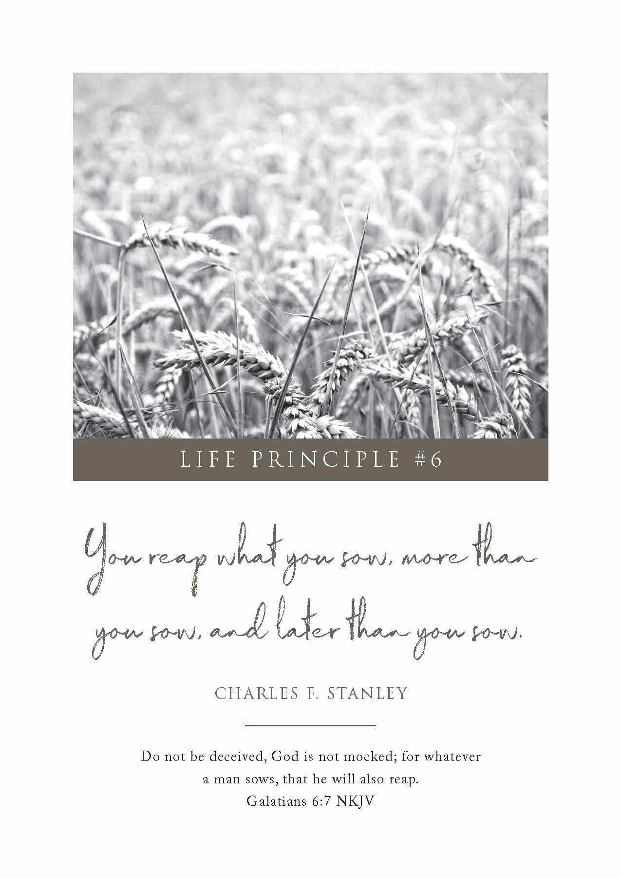 Stanley Scripture Card #6