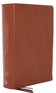 Charles F. Stanley Life Principles Bible KJV brown 179x300