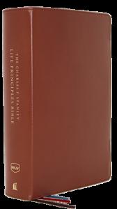 Charles F. Stanley Life Principles Bible NKJV brown 167x300