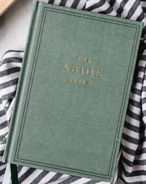 Photo of the NKJV Abide Bible green cover