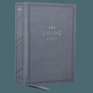 net-abide-blue