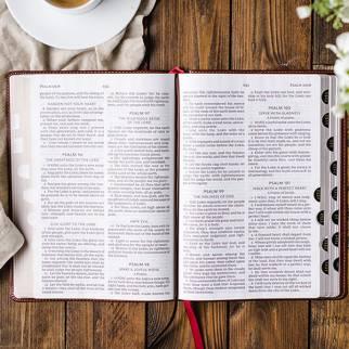 KJV Large print Bibles