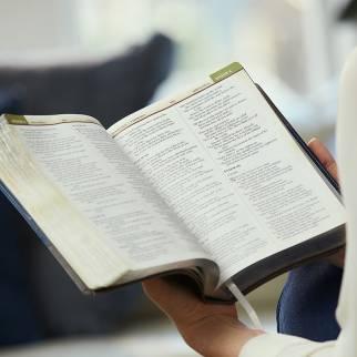 NIV Chronological Study Bible photo