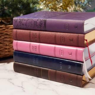 NKJV Deluxe Gfit Bible